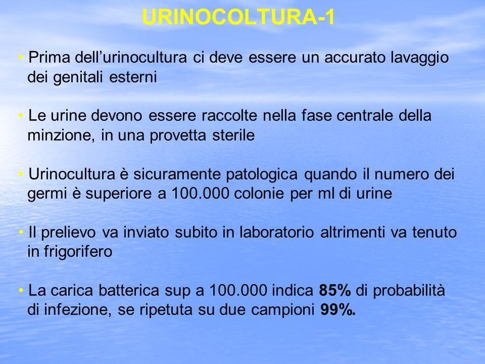 URINOCOLTURA-1 Prima dell'urinocultura ci deve essere un accurato lavaggio. dei genitali esterni.