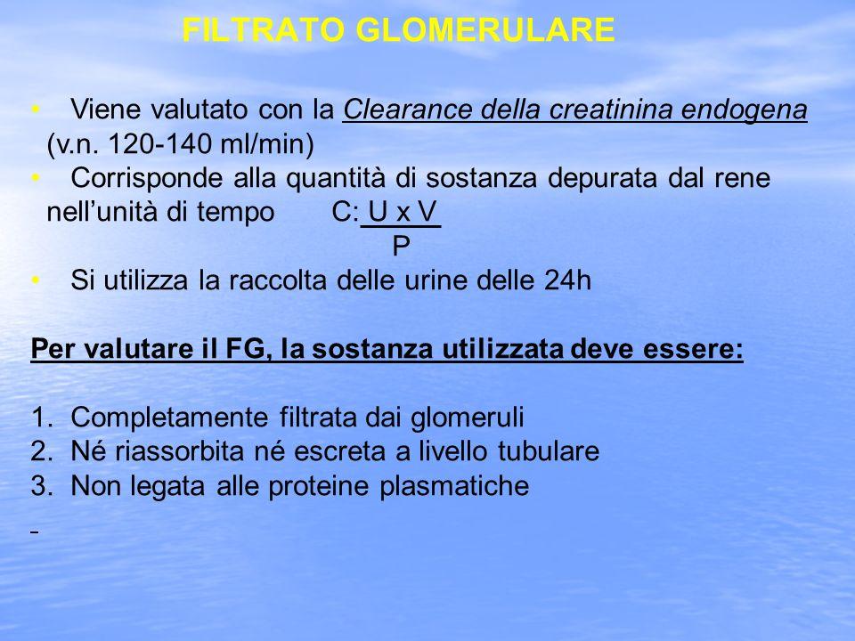 FILTRATO GLOMERULARE Viene valutato con la Clearance della creatinina endogena. (v.n. 120-140 ml/min)