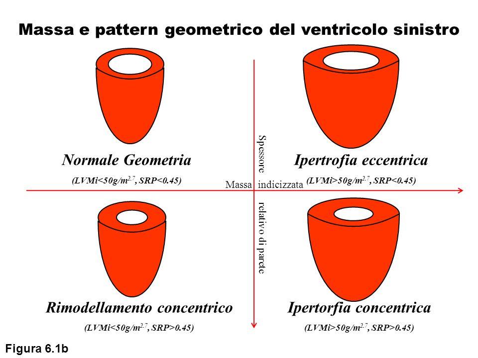 Massa e pattern geometrico del ventricolo sinistro