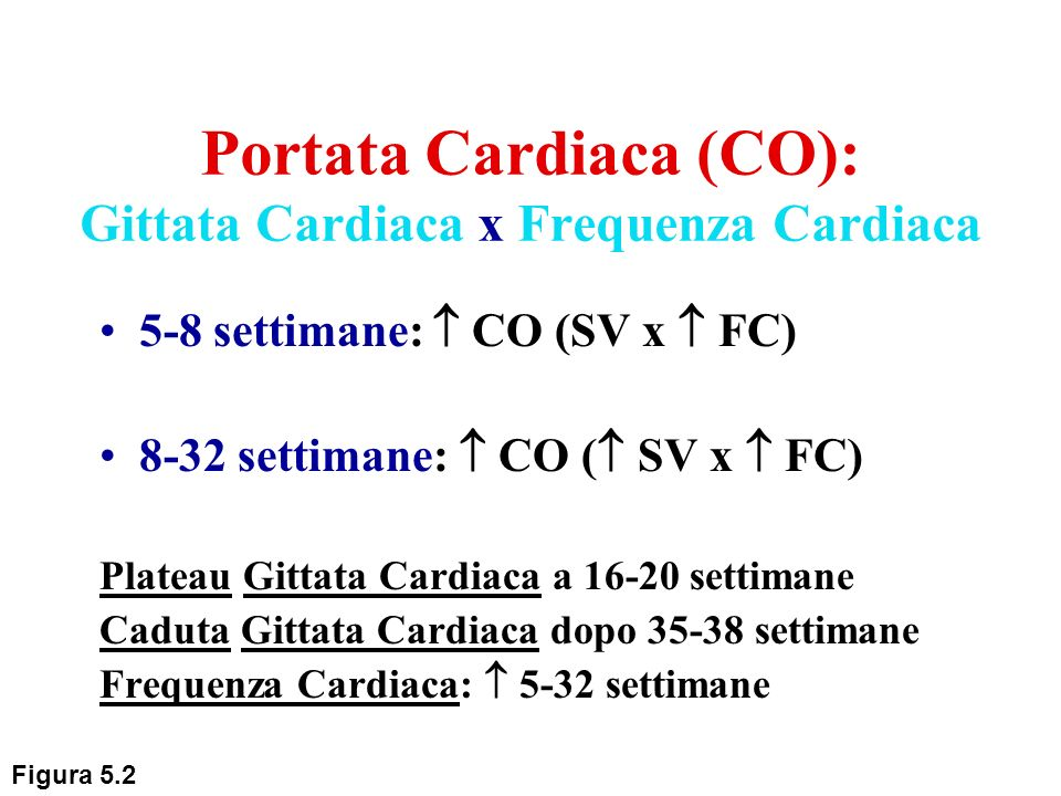 Portata Cardiaca (CO): Gittata Cardiaca x Frequenza Cardiaca