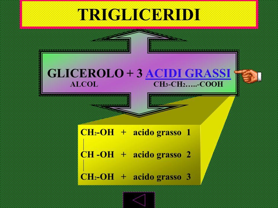 GLICEROLO + 3 ACIDI GRASSI