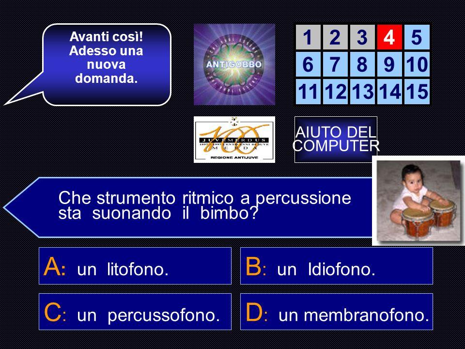 A: un litofono. B: un Idiofono. C: un percussofono.