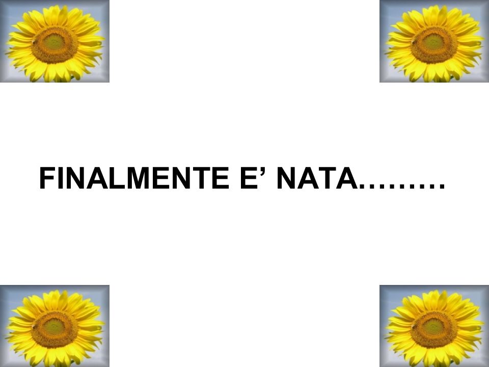 FINALMENTE E' NATA………