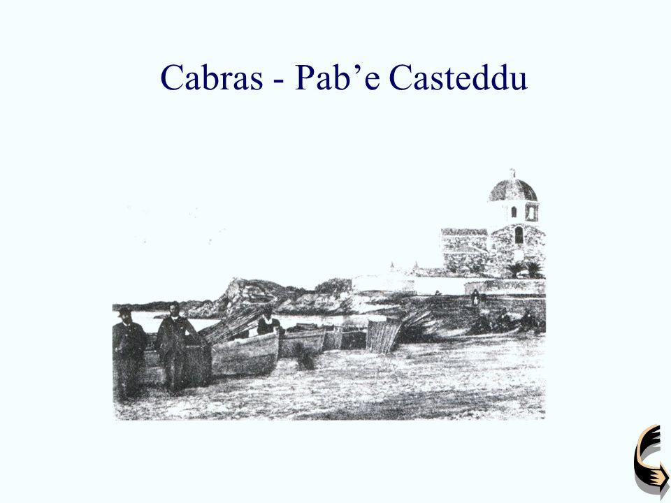 Cabras - Pab'e Casteddu