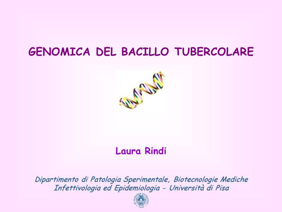 GENOMICA DEL BACILLO TUBERCOLARE