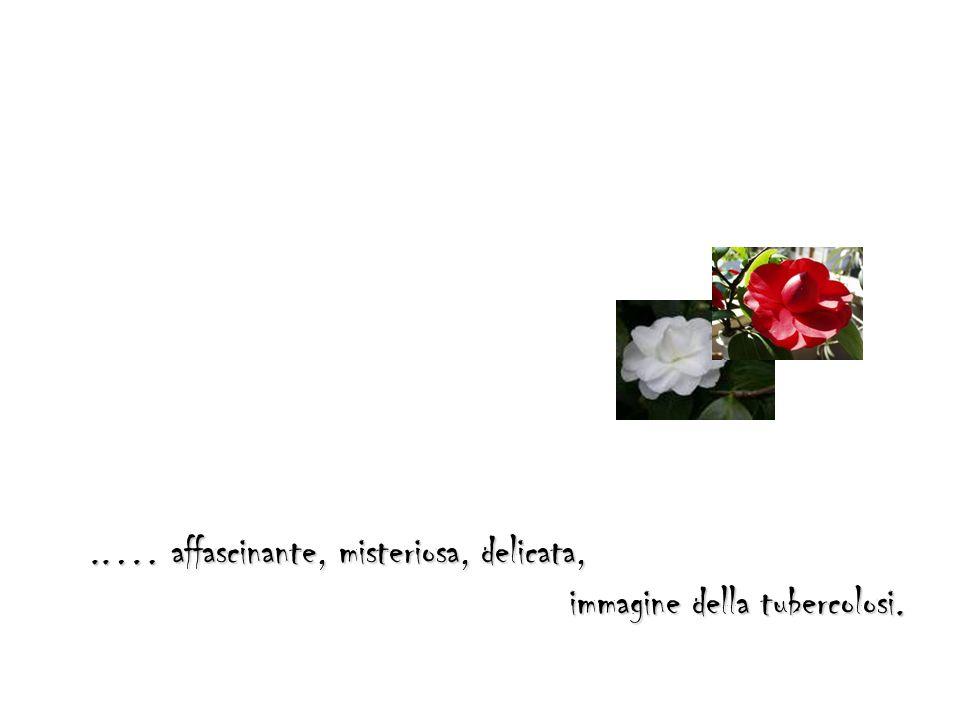 ..… affascinante, misteriosa, delicata,