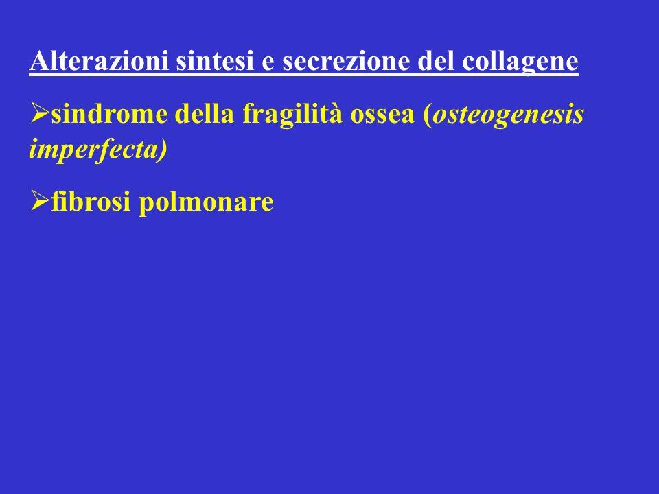 Alterazioni sintesi e secrezione del collagene