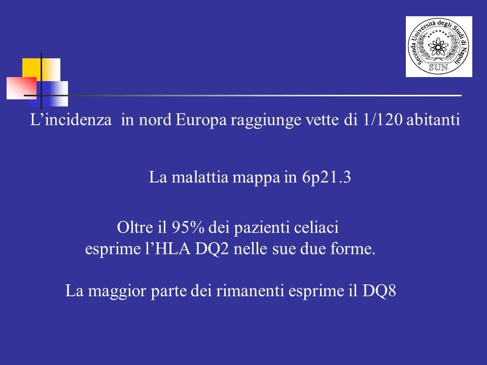 L'incidenza in nord Europa raggiunge vette di 1/120 abitanti