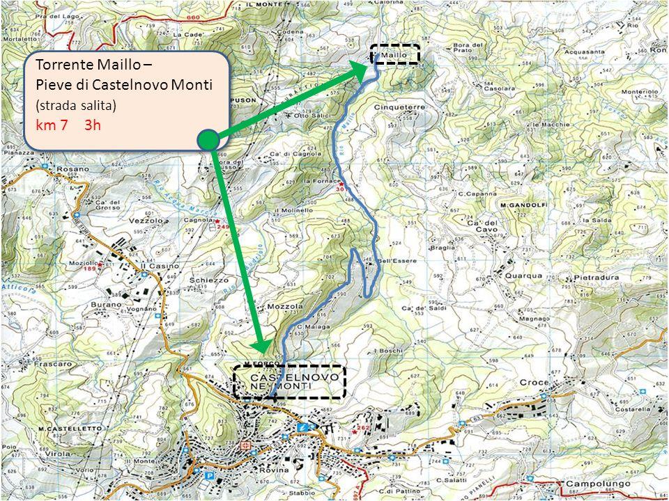 Pieve di Castelnovo Monti km 7 3h