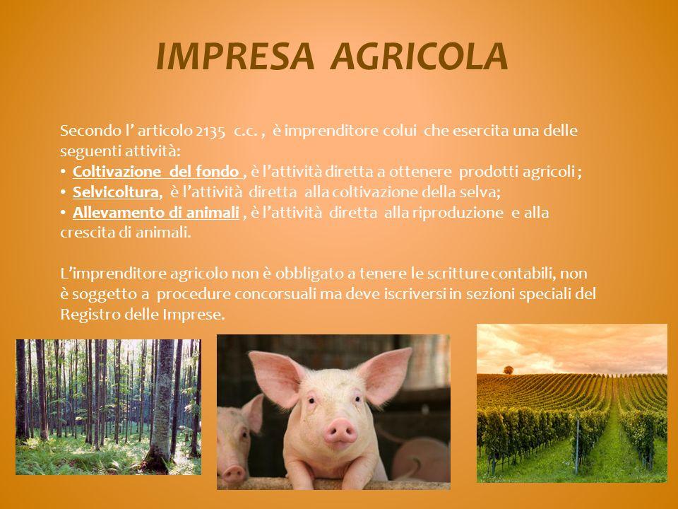IMPRESA AGRICOLA Secondo l' articolo 2135 c.c. , è imprenditore colui che esercita una delle seguenti attività: