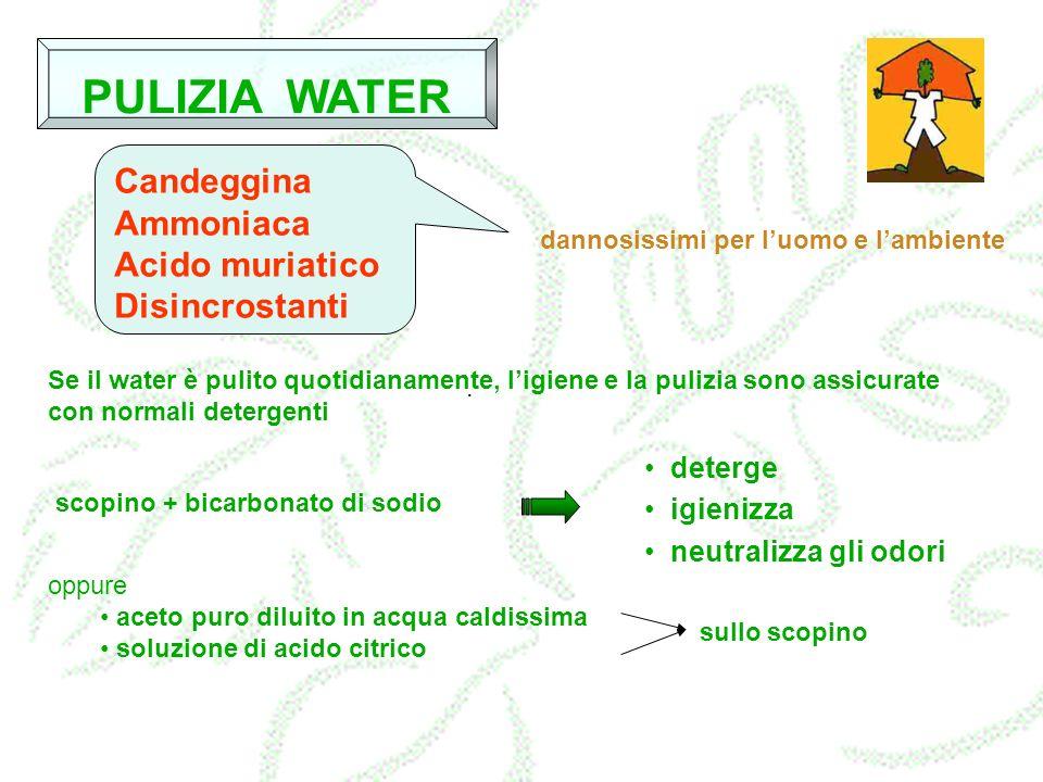 PULIZIA WATER Candeggina Ammoniaca Acido muriatico Disincrostanti