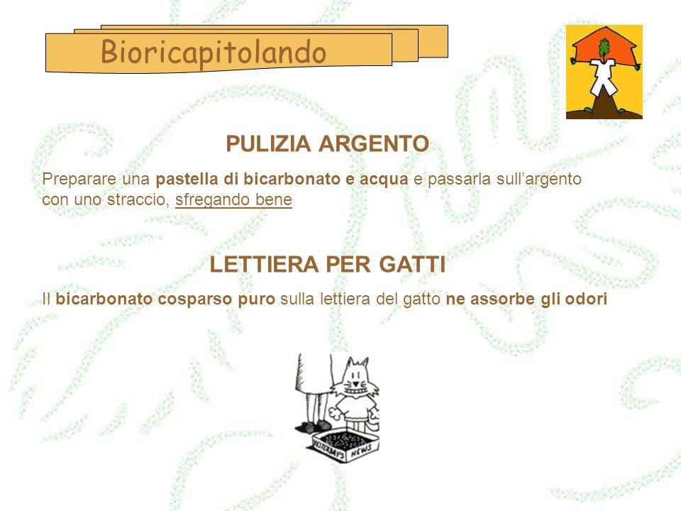 Bioricapitolando PULIZIA ARGENTO LETTIERA PER GATTI