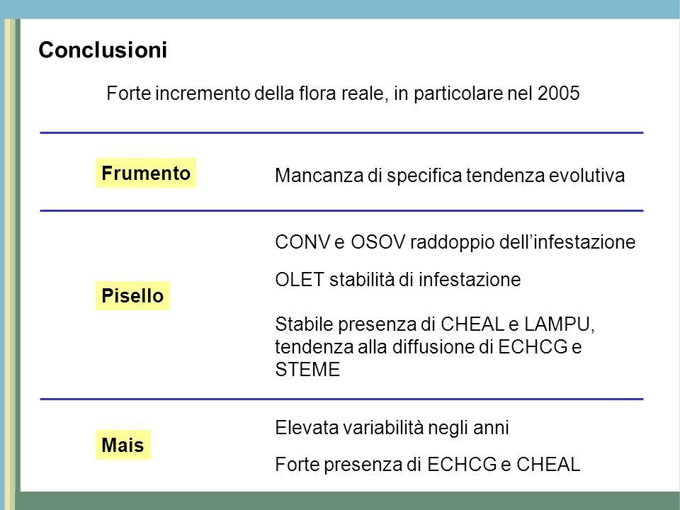 Conclusioni Forte incremento della flora reale, in particolare nel 2005. Frumento. Mancanza di specifica tendenza evolutiva.
