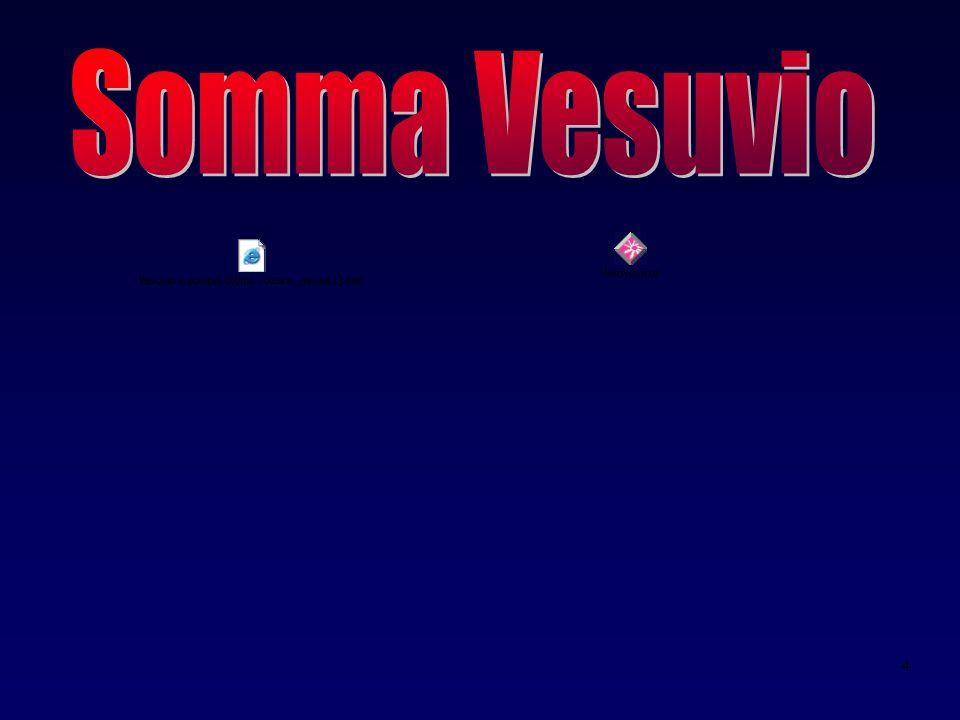 Somma Vesuvio R.Santacroce 2003