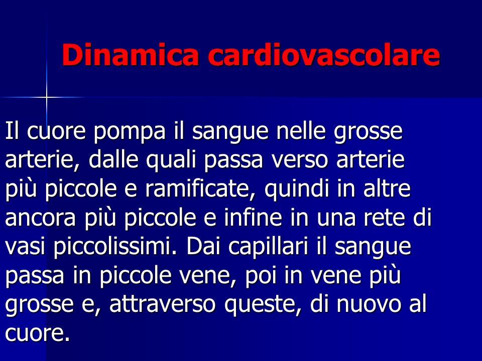 Dinamica cardiovascolare