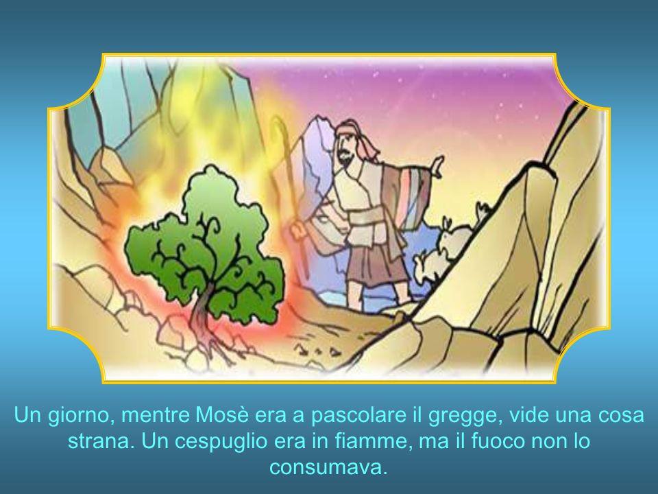 Un giorno, mentre Mosè era a pascolare il gregge, vide una cosa strana