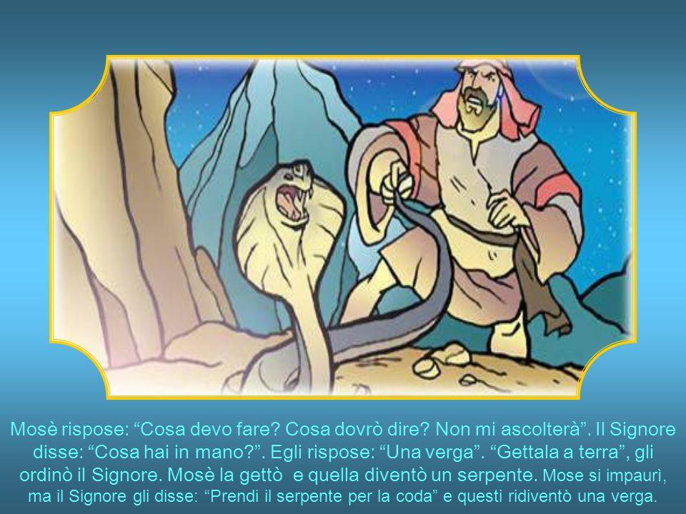 Mosè rispose: Cosa devo fare. Cosa dovrò dire. Non mi ascolterà