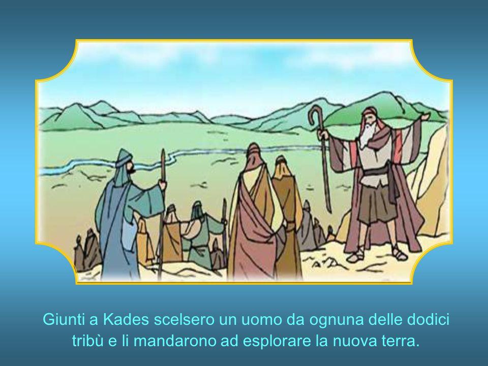 Giunti a Kades scelsero un uomo da ognuna delle dodici tribù e li mandarono ad esplorare la nuova terra.