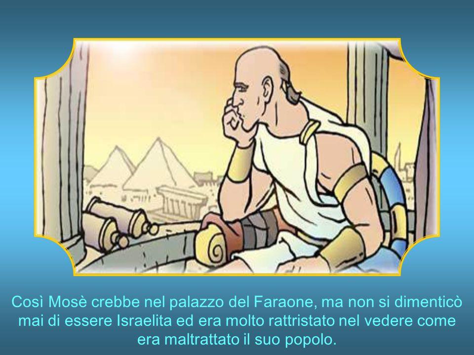 Così Mosè crebbe nel palazzo del Faraone, ma non si dimenticò mai di essere Israelita ed era molto rattristato nel vedere come era maltrattato il suo popolo.