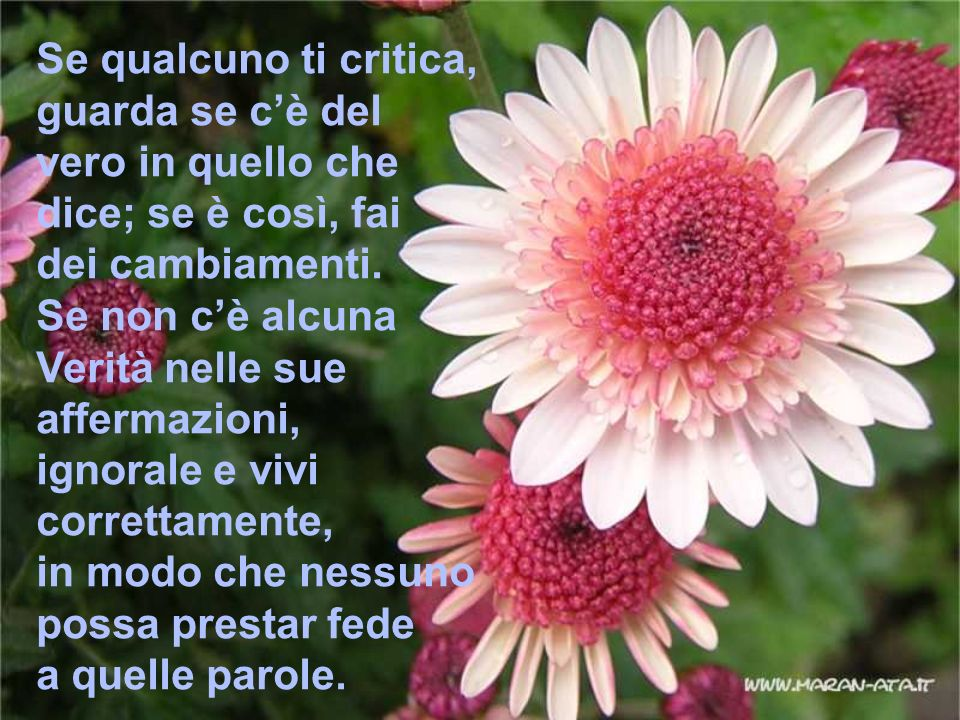 Se qualcuno ti critica, guarda se c'è del. vero in quello che. dice; se è così, fai. dei cambiamenti.