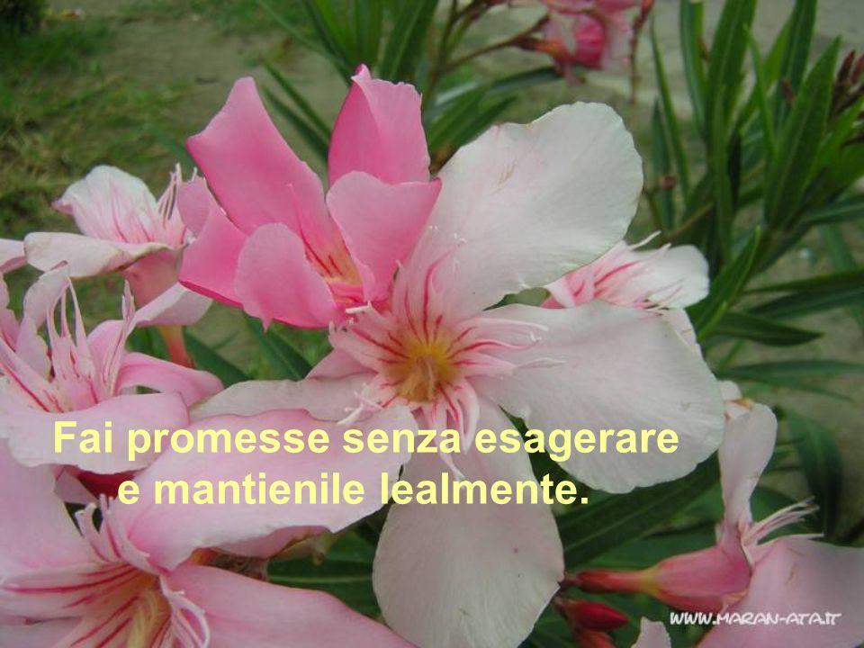 Fai promesse senza esagerare e mantienile lealmente.