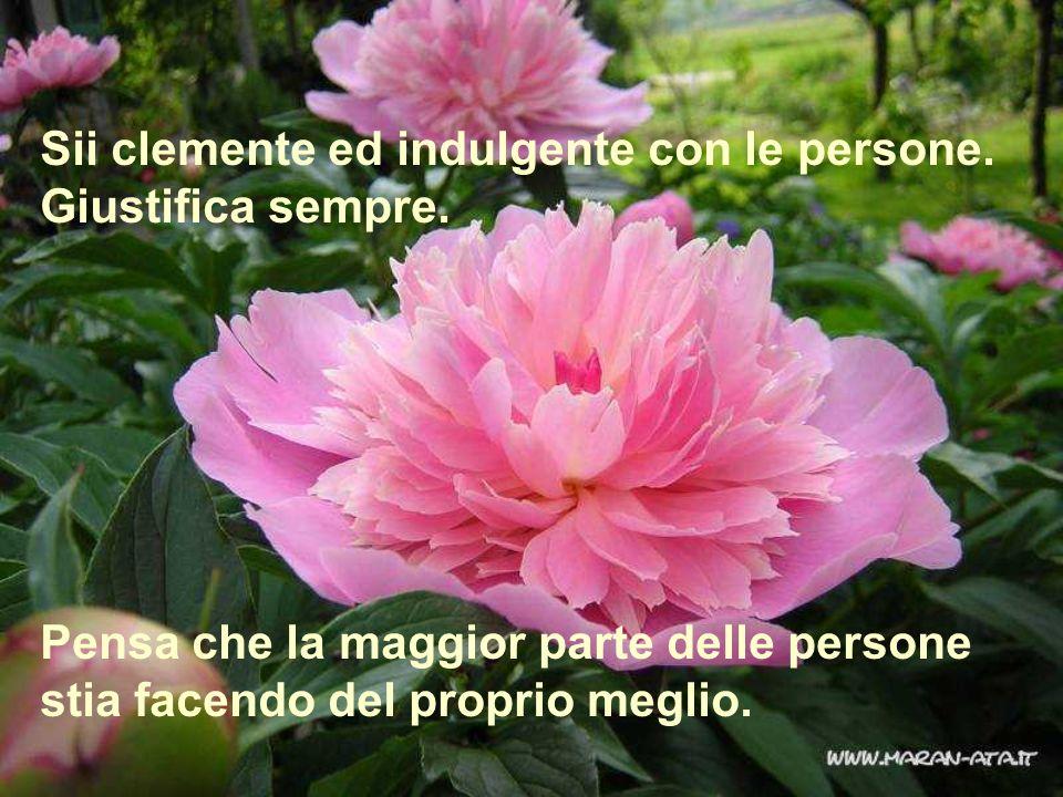 Sii clemente ed indulgente con le persone.