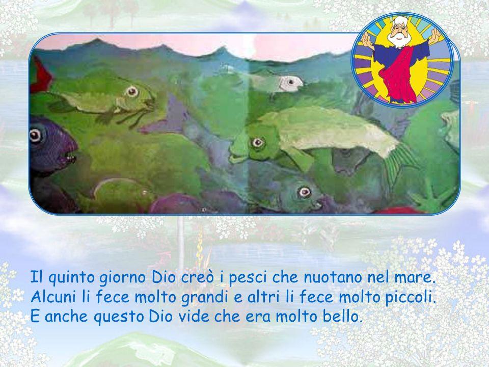 Il quinto giorno Dio creò i pesci che nuotano nel mare.