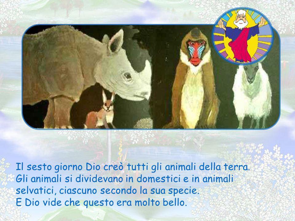 Il sesto giorno Dio creò tutti gli animali della terra.