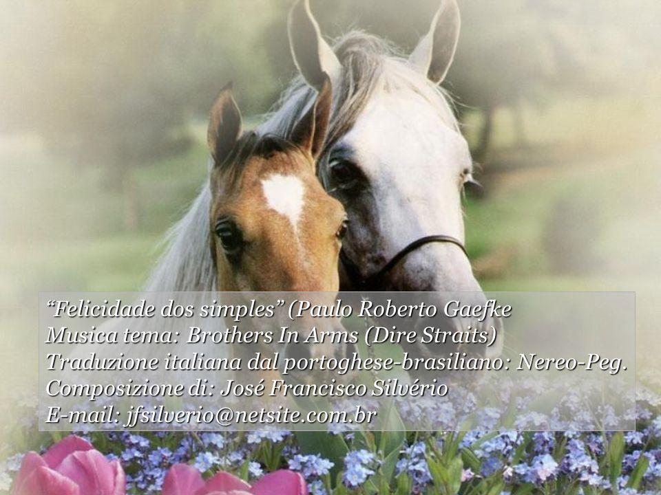 Felicidade dos simples (Paulo Roberto Gaefke
