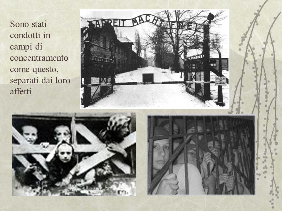 Sono stati condotti in campi di concentramento come questo, separati dai loro affetti