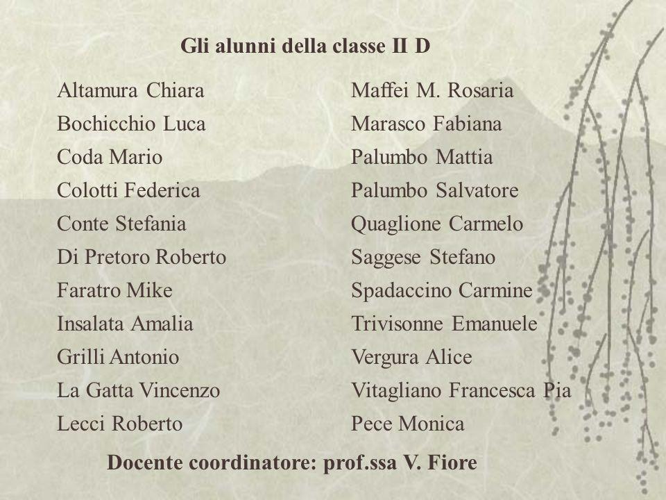 Gli alunni della classe II D