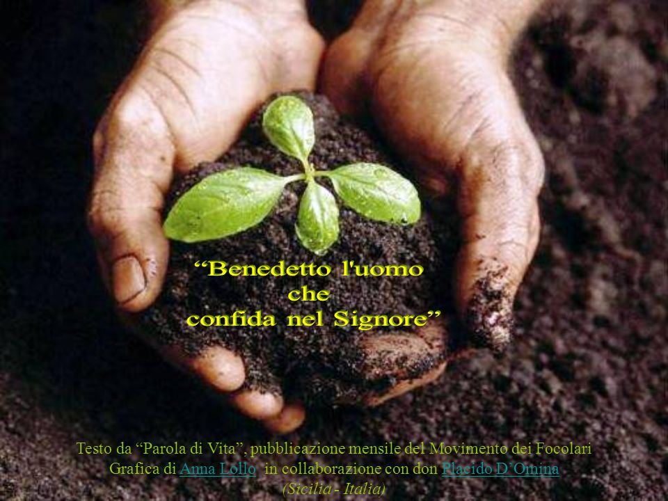 Grafica di Anna Lollo in collaborazione con don Placido D'Omina