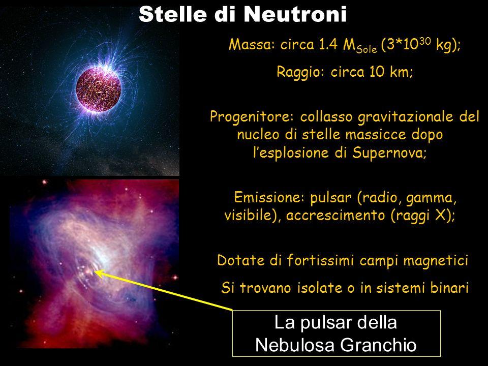 Stelle di Neutroni La pulsar della Nebulosa Granchio