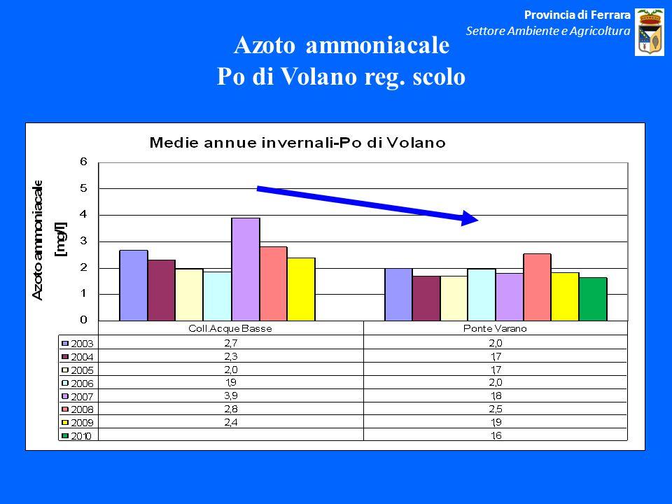 Azoto ammoniacale Po di Volano reg. scolo