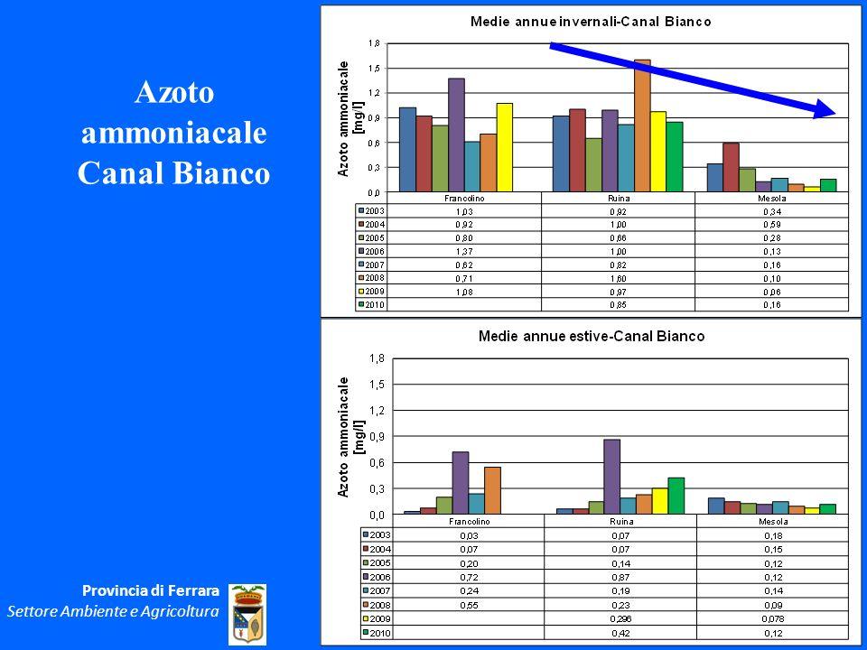 Azoto ammoniacale Canal Bianco