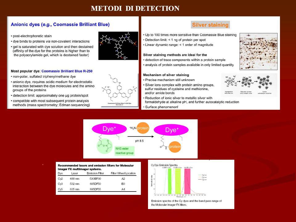 METODI DI DETECTION .