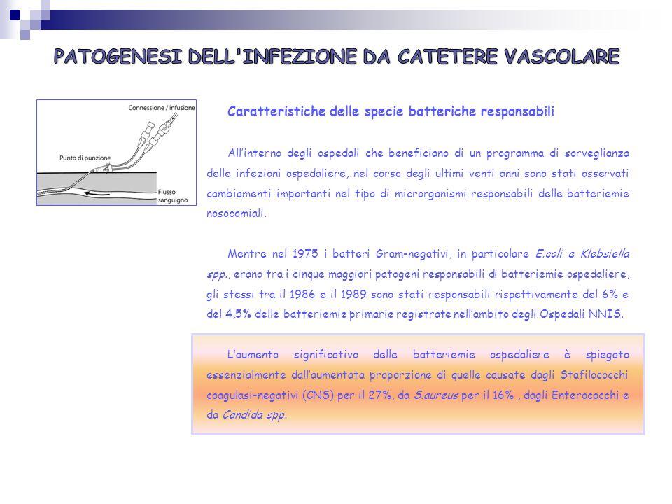 PATOGENESI DELL INFEZIONE DA CATETERE VASCOLARE