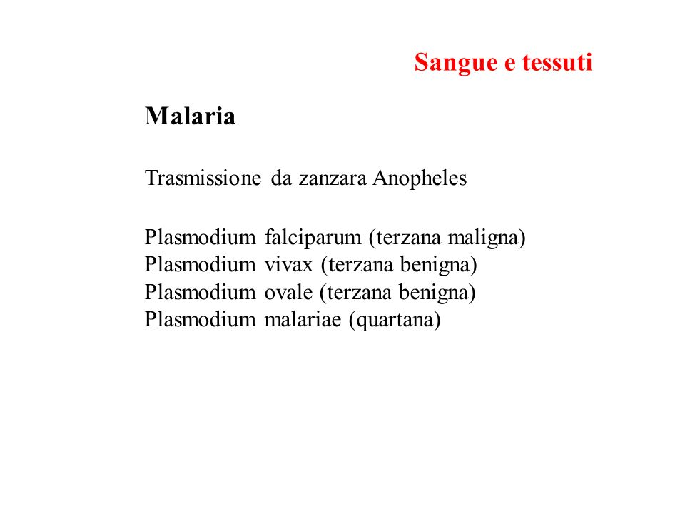 Sangue e tessuti Malaria Trasmissione da zanzara Anopheles