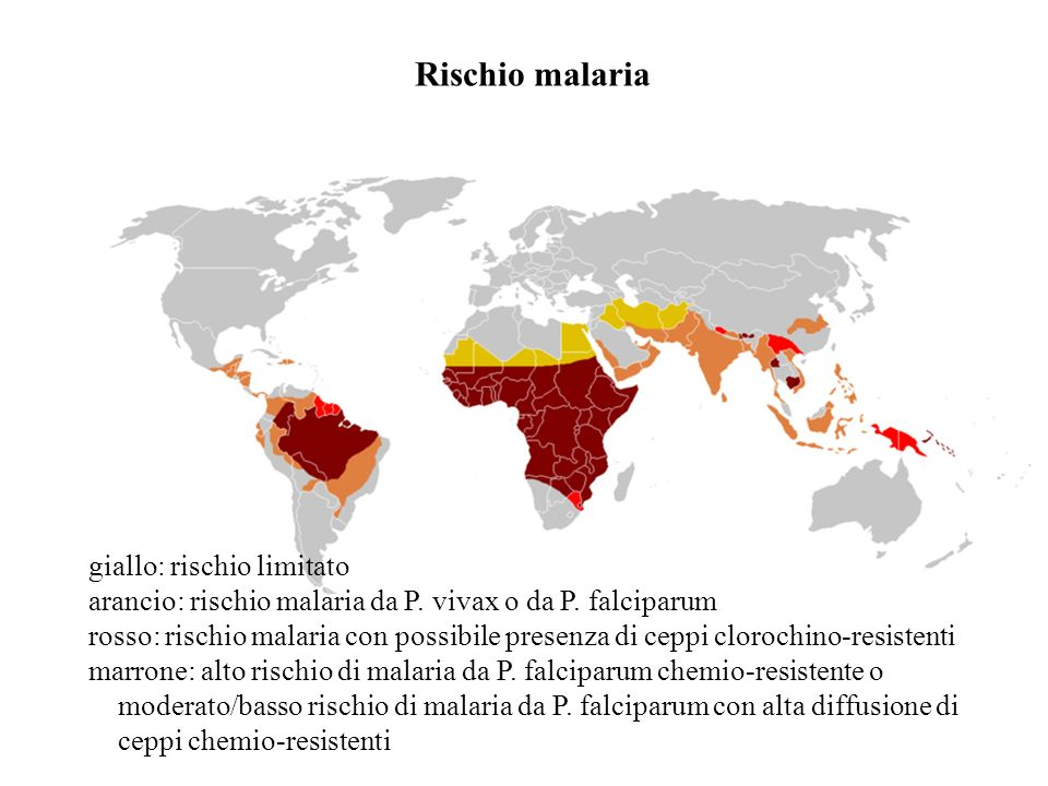 Rischio malaria giallo: rischio limitato