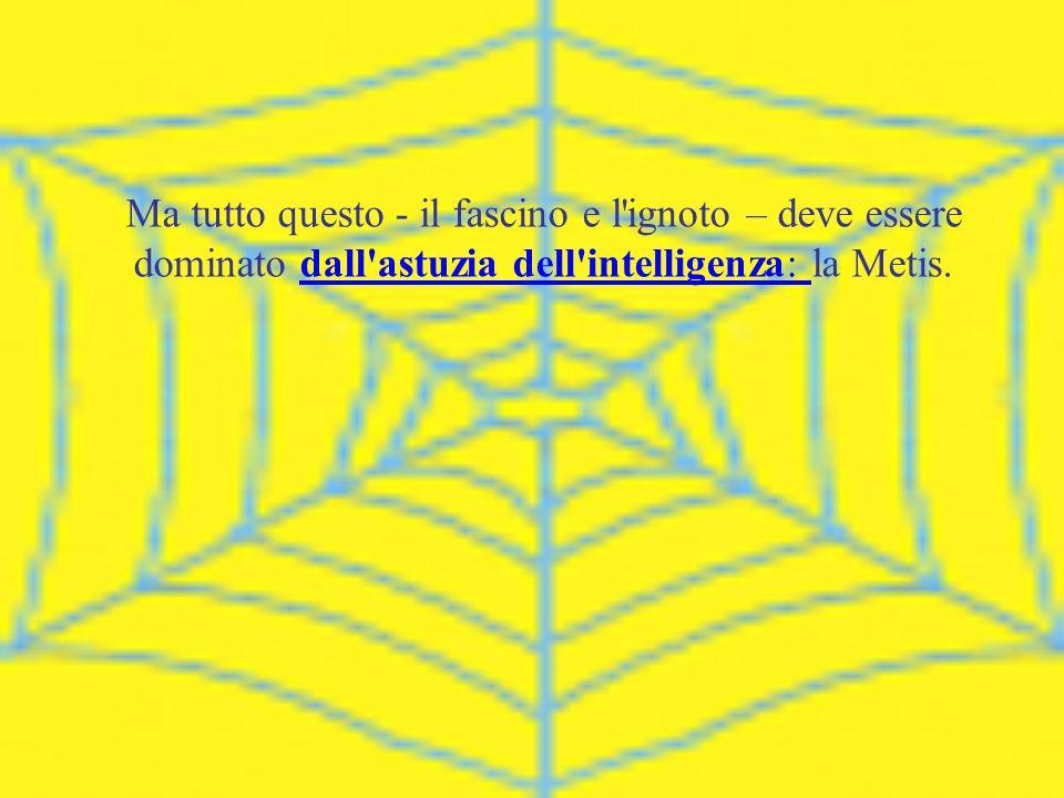 Ma tutto questo - il fascino e l ignoto – deve essere dominato dall astuzia dell intelligenza: la Metis.