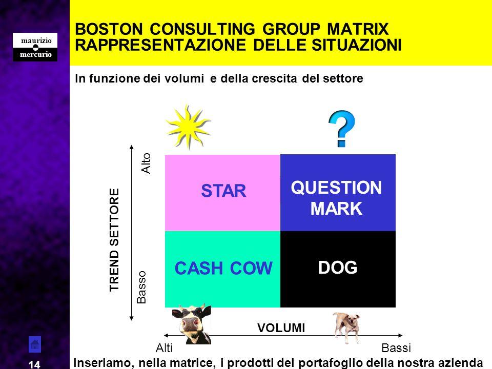 BOSTON CONSULTING GROUP MATRIX RAPPRESENTAZIONE DELLE SITUAZIONI