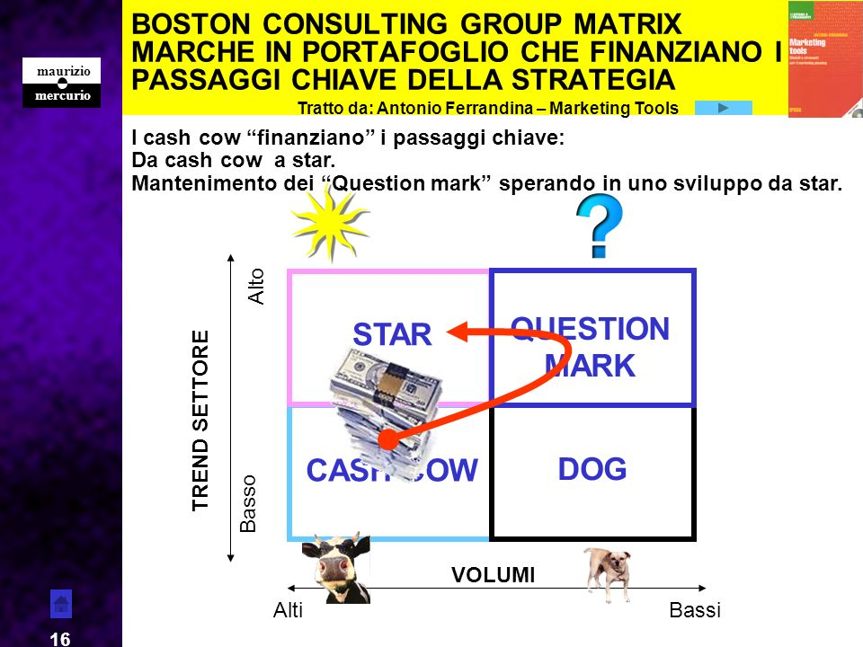 QUESTION MARK STAR CASH COW DOG