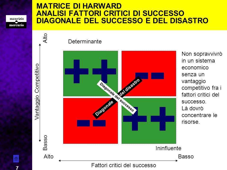 MATRICE DI HARWARD ANALISI FATTORI CRITICI DI SUCCESSO DIAGONALE DEL SUCCESSO E DEL DISASTRO