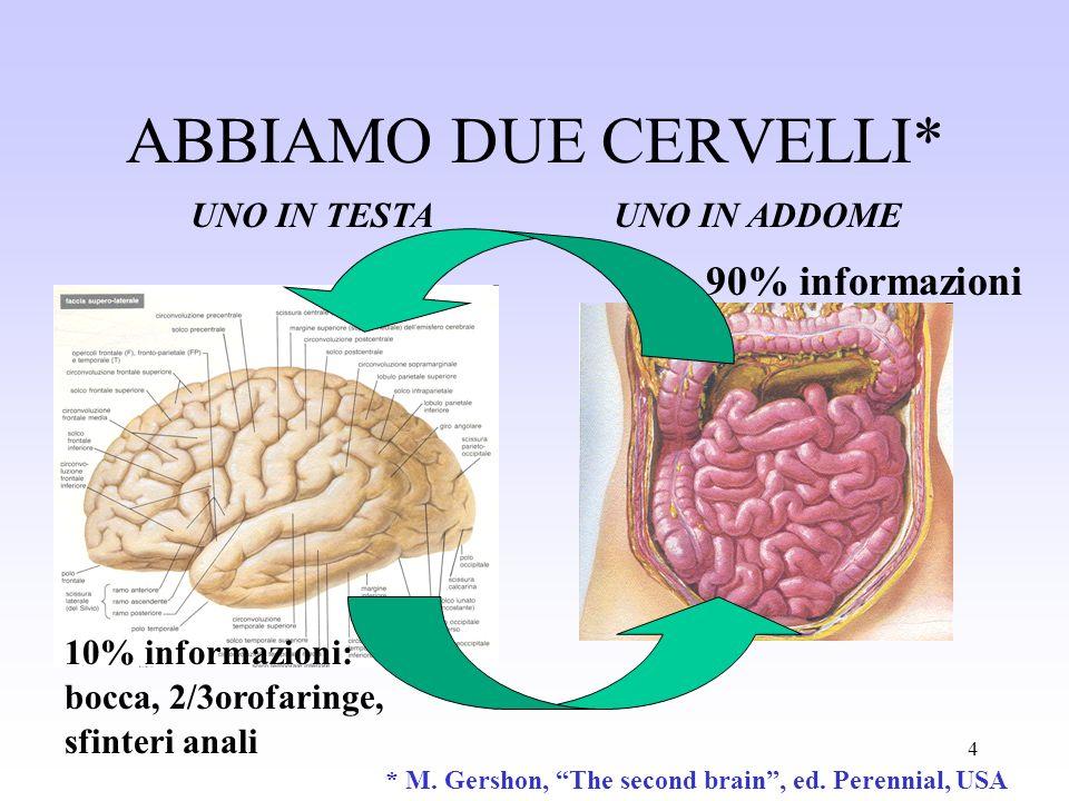 ABBIAMO DUE CERVELLI* 90% informazioni UNO IN TESTA UNO IN ADDOME
