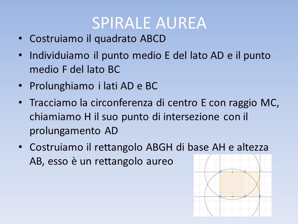 SPIRALE AUREA Costruiamo il quadrato ABCD