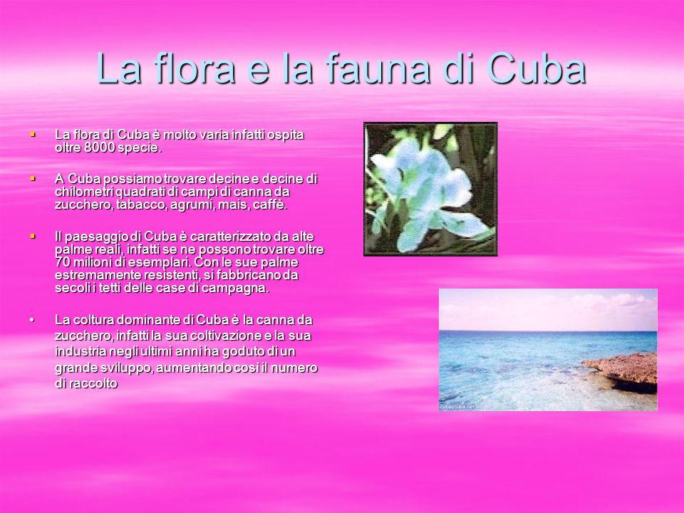 La flora e la fauna di Cuba