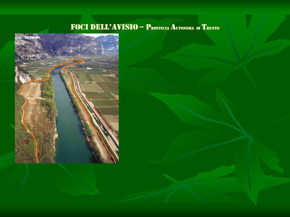 Foci dell'Avisio – Provincia Autonoma di Trento