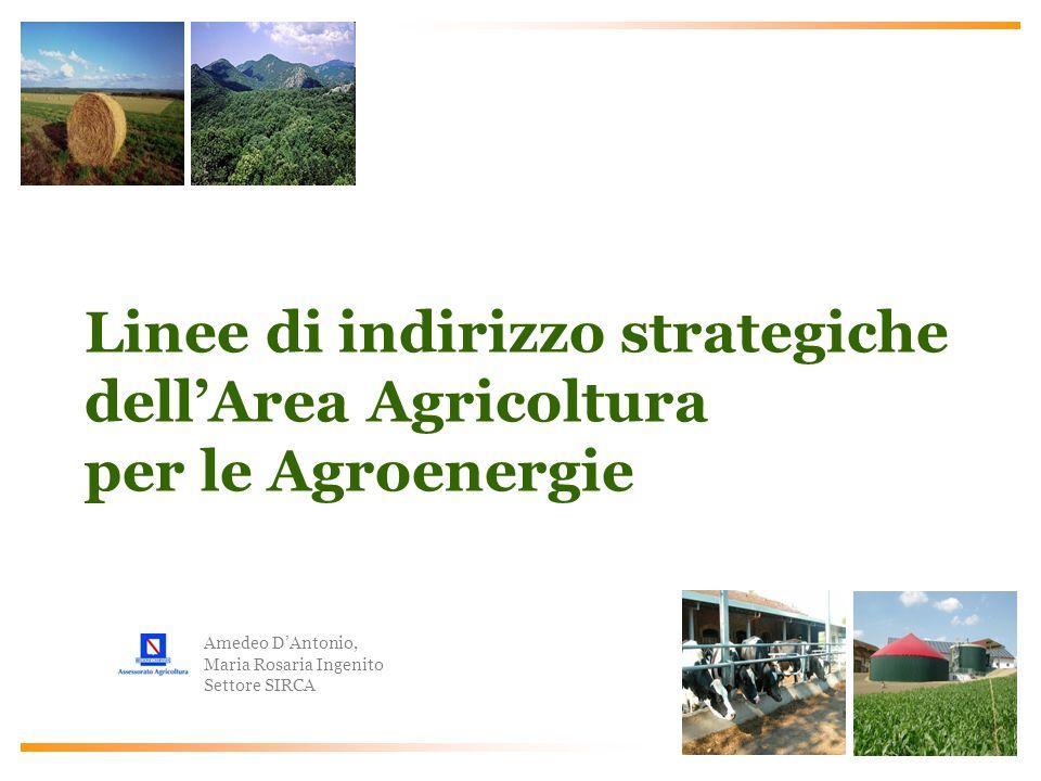Linee di indirizzo strategiche dell'Area Agricoltura