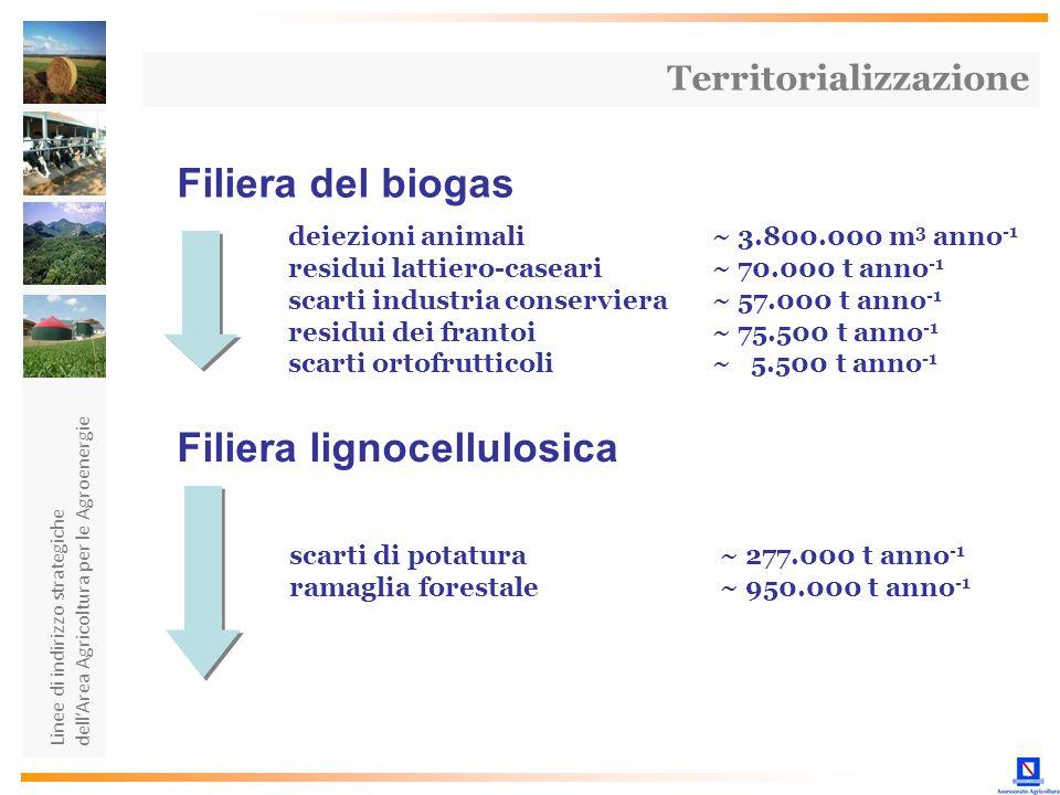 Filiera lignocellulosica