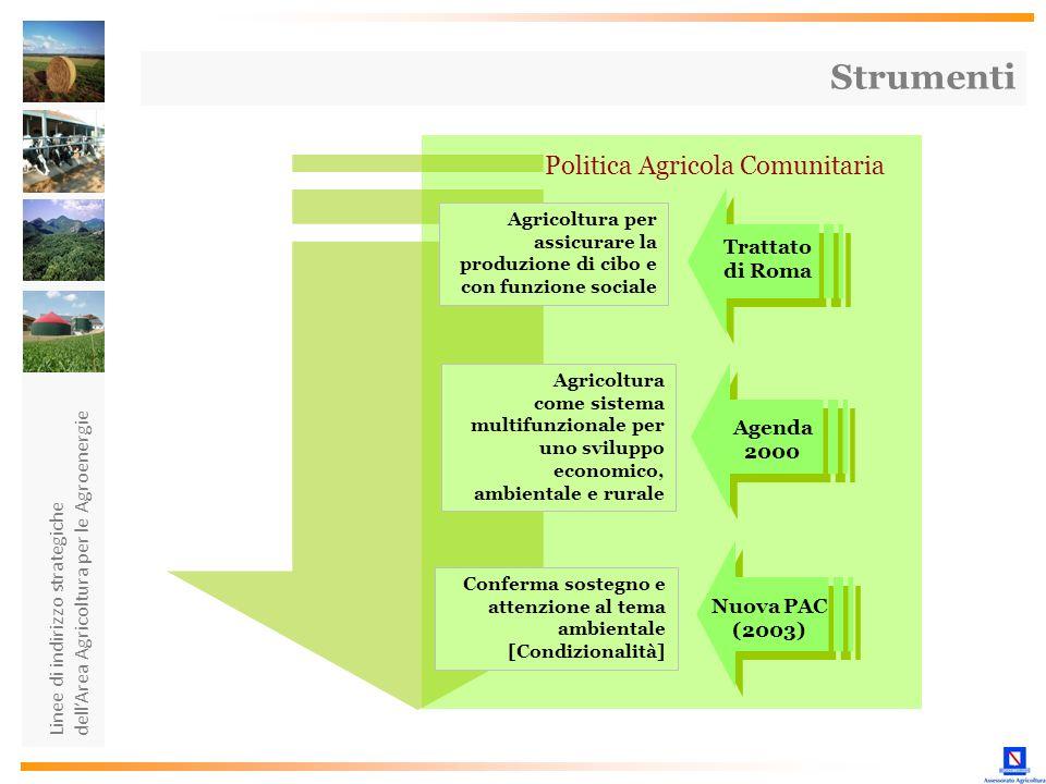 Strumenti Politica Agricola Comunitaria Trattato di Roma